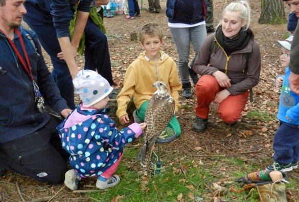 Lesní pedagogika 2017